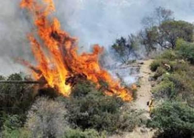 آتش سوزی