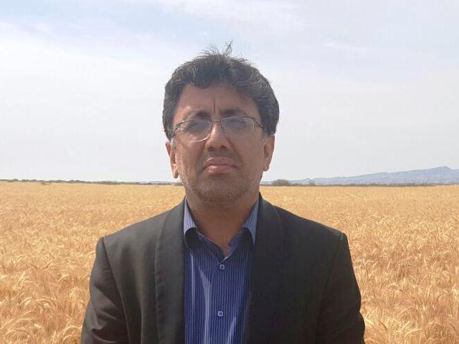 احمدی امرالله