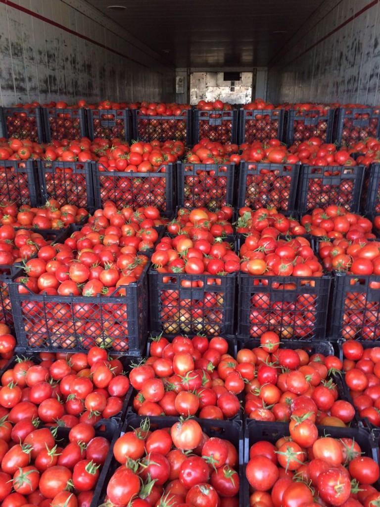 درخواست خرید میوه و صیفی جات جهت صادرات به روسیه