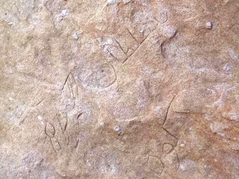 «سلطان کوه» در منطقه شکار ممنوع مند دستگیر شد