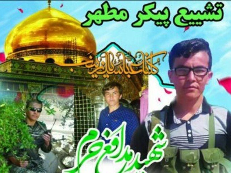 دومین شهید مدافع حرم بوشهر