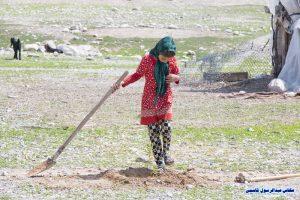 کاشت نهال در منطقه عشایری دشتی